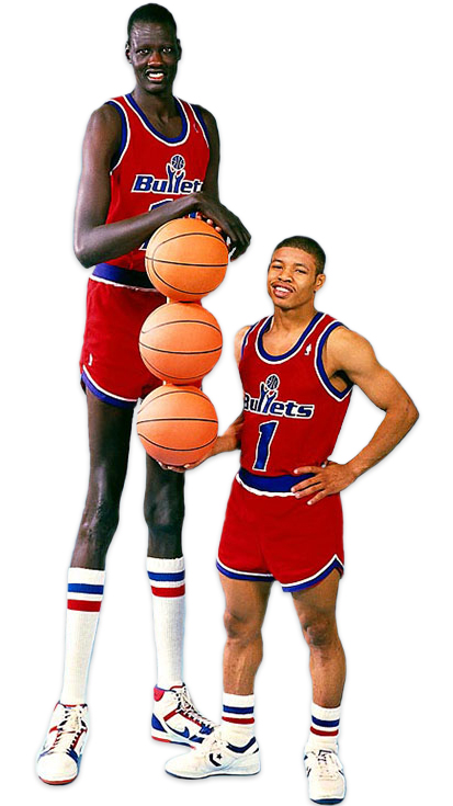 basketball job openings